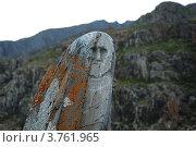 Купить «Памятник древнему тюркскому воину (каменная баба)», фото № 3761965, снято 12 августа 2008 г. (c) Анна Омельченко / Фотобанк Лори