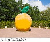 Купить «Москва, памятник яблоку Адама и Евы, парк 50-летия Октября», фото № 3762577, снято 9 августа 2012 г. (c) ИВА Афонская / Фотобанк Лори