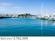 Купить «Старая крепость и яхты в порту Антиб, Лазурное побережье Франции», фото № 3762609, снято 12 июня 2010 г. (c) ElenArt / Фотобанк Лори