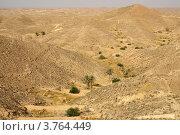 Купить «Лунный пейзаж в окрестностях Матматы, Тунис», фото № 3764449, снято 3 августа 2012 г. (c) Natalya Sidorova / Фотобанк Лори