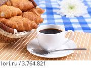Купить «Кофе и круассаны», фото № 3764821, снято 13 марта 2012 г. (c) Sergey Nivens / Фотобанк Лори