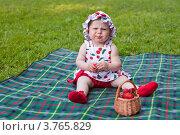 Кислая ягодка. Стоковое фото, фотограф Оксана Лычева / Фотобанк Лори