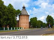 Купить «Город Суздаль, Спасо-Евфимиев мужской монастырь», фото № 3772013, снято 27 июня 2011 г. (c) ElenArt / Фотобанк Лори