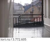 Первый снег. Стоковое фото, фотограф Николаева Наталья / Фотобанк Лори