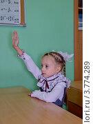 Купить «Первоклассница тянет руку, сидя в классе за партой», эксклюзивное фото № 3774289, снято 24 августа 2012 г. (c) Илюхина Наталья / Фотобанк Лори