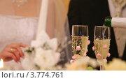 Купить «Жениху и невесты в бокалы наливают шампанское», видеоролик № 3774761, снято 18 декабря 2011 г. (c) Losevsky Pavel / Фотобанк Лори