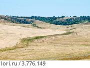 Купить «Край пшеничного поля. Холмистая местность», фото № 3776149, снято 21 июля 2012 г. (c) Вадим Орлов / Фотобанк Лори