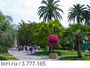 Купить «Лазурный берег Франции, парк, Канны», фото № 3777165, снято 13 июня 2010 г. (c) ElenArt / Фотобанк Лори