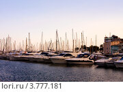 Купить «Роскошные яхты в порту Сен Пьер, Канны, Лазурный берег франции», фото № 3777181, снято 13 июня 2010 г. (c) ElenArt / Фотобанк Лори