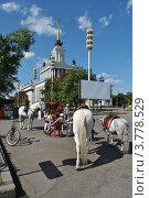 Купить «ВВЦ (ВДНХ). Москва», эксклюзивное фото № 3778529, снято 8 августа 2012 г. (c) lana1501 / Фотобанк Лори