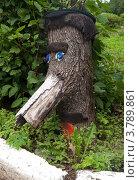 Голова из старого пня (2012 год). Редакционное фото, фотограф Вячеслав Палес / Фотобанк Лори