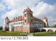 Купить «Мирский замок, Беларусь», фото № 3790865, снято 11 июня 2012 г. (c) Овчинникова Ирина / Фотобанк Лори