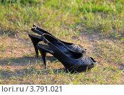 Купить «Женские туфли на траве», эксклюзивное фото № 3791021, снято 19 августа 2012 г. (c) Юрий Морозов / Фотобанк Лори