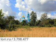 Купить «Коломна.Вид на Богоявленскую церковь», фото № 3798477, снято 25 августа 2012 г. (c) АЛЕКСАНДР МИХЕИЧЕВ / Фотобанк Лори