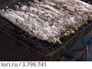 Тайская гриль рыба нашпигованная травой на мангале (решетке), фото № 3799741, снято 11 декабря 2010 г. (c) Эдуард Паравян / Фотобанк Лори