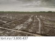 Пашня после дождя. Стоковое фото, фотограф Михаил Бессмертный / Фотобанк Лори