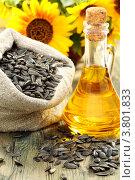 Купить «Растительное масло и семечки», фото № 3801833, снято 1 сентября 2012 г. (c) Марина Сапрунова / Фотобанк Лори