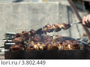 Шашлык. Стоковое фото, фотограф Дмитрий Ворона / Фотобанк Лори