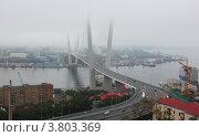 Вантовый мост через бухту Золотой Рог,  Владивосток (2012 год). Редакционное фото, фотограф Наталья Силинская / Фотобанк Лори