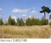 Вид на микрорайон Жулебино со стороны Жулебинского лесопарка, Москва (2010 год). Стоковое фото, фотограф Владислав Чеканин / Фотобанк Лори