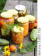Купить «Домашнее консервирование, овощные консервы», фото № 3807153, снято 2 августа 2012 г. (c) Володина Ольга / Фотобанк Лори