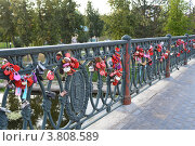Купить «Город Орел, Александровский мост, замки молодоженов», фото № 3808589, снято 5 августа 2012 г. (c) Наталья Спиридонова / Фотобанк Лори