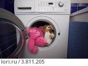 Мягкие игрушки после мытья в стиральной машинке (2012 год). Редакционное фото, фотограф Чукин Дмитрий / Фотобанк Лори