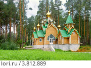 Урочище Ганина яма. Мужской монастырь (2000 год). Стоковое фото, фотограф Parmenov Pavel / Фотобанк Лори