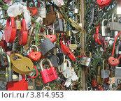 Купить «Замки», фото № 3814953, снято 14 июля 2012 г. (c) Ольга Батракова / Фотобанк Лори