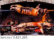 Румяные аппетитные поросята готовятся на вертеле в камине, фото № 3821265, снято 30 декабря 2011 г. (c) Эдуард Паравян / Фотобанк Лори