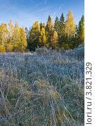 Купить «Осенний пейзаж с замороженной травой», фото № 3821329, снято 10 октября 2010 г. (c) Ольга Денисова / Фотобанк Лори