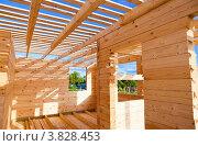 Строительство нового деревянного дома. Стоковое фото, фотограф FotograFF / Фотобанк Лори