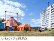 Купить «Цирк шапито в городе Сегежа, Карелия», фото № 3828829, снято 26 августа 2012 г. (c) Кекяляйнен Андрей / Фотобанк Лори