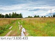 Купить «Лужа на полевой дороге со следами шин», фото № 3830433, снято 25 августа 2012 г. (c) Лисовская Наталья / Фотобанк Лори