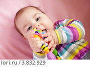 Купить «Грудной ребенок грызет игрушку-прорезыватель», фото № 3832929, снято 27 марта 2012 г. (c) Оксана Ковач / Фотобанк Лори