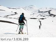 Купить «Ски-альпинизм. Камчатка, Авачинский вулкан», фото № 3836289, снято 21 апреля 2012 г. (c) А. А. Пирагис / Фотобанк Лори