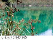 Плитвицкие озера. Стоковое фото, фотограф Анна Назарова / Фотобанк Лори
