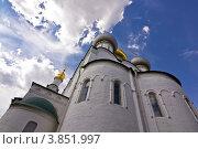 Купить «Купола Смоленского собора Новодевичьего монастыря», фото № 3851997, снято 14 июля 2012 г. (c) Коршунов Владимир / Фотобанк Лори