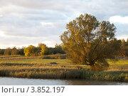 Осенний пейзаж. Стоковое фото, фотограф light / Фотобанк Лори