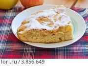Купить «Кусок яблочного пирога лежит на тарелке», эксклюзивное фото № 3856649, снято 8 сентября 2012 г. (c) Lora / Фотобанк Лори