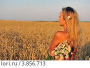 Обнаженная девушка в хлебном поле. Стоковое фото, фотограф Владимир ГОРОВЫХ / Фотобанк Лори