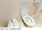 Купить «Биде и унитаз в туалетной комнате», фото № 3857621, снято 5 февраля 2010 г. (c) Elnur / Фотобанк Лори