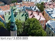 Эстония. Таллин. Вид на крыши Старого города (2012 год). Редакционное фото, фотограф Александр Лопарев / Фотобанк Лори