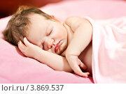 Новорожденный малыш спит. Стоковое фото, фотограф Екатерина Штерн / Фотобанк Лори