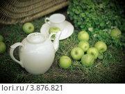 Натюрморт: чайник и чайная пара с яблоками на траве. Стоковое фото, фотограф Елена Круглова / Фотобанк Лори