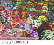 Продажа традиционных сувениров и хризантем в горшках на ежегодной цветочной выставке в Киеве. Стоковое фото, фотограф Олеся Сарычева / Фотобанк Лори