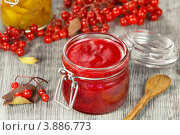 Купить «Калина, протёртая с сахаром», эксклюзивное фото № 3886773, снято 27 сентября 2012 г. (c) Александр Курлович / Фотобанк Лори
