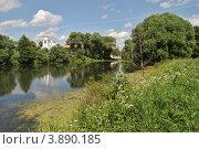 Купить «Летний пейзаж, пруд, заросший ряской», эксклюзивное фото № 3890185, снято 25 июня 2012 г. (c) lana1501 / Фотобанк Лори