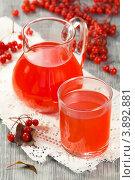 Купить «Морс из калины с сахаром», эксклюзивное фото № 3892881, снято 27 сентября 2012 г. (c) Александр Курлович / Фотобанк Лори
