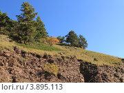 Купить «Одинокие сосны на горном обрыве», эксклюзивное фото № 3895113, снято 30 сентября 2012 г. (c) Rekacy / Фотобанк Лори